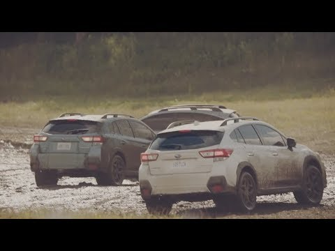 2018 subaru dog commercial. wonderful commercial the all new 2018 subaru crosstrek  park to subaru dog commercial