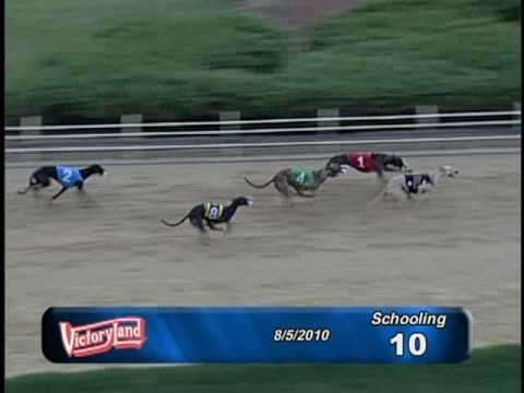 Victoryland 08/05/10 Schooling Race 10