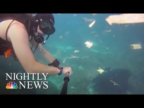 Stunning New Video Shows Massive Plastic Debris In Ocean   NBC Nightly News