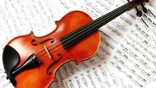 Violão Violino 🎶🎸