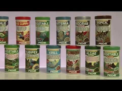 PRODAC - Fish Food For Aquarium