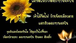 เจ้าไม้ขีดไฟกับดอกทานตะวัน