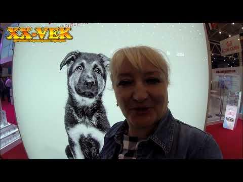 Выставка собак в Киеве 2017 - чемпионат Европы Euro Dog Show 2017