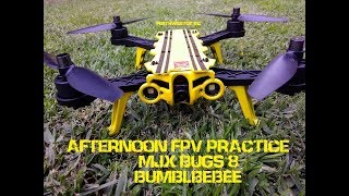 AFTERNOON FPV PRACTICE MJX BUGS 8