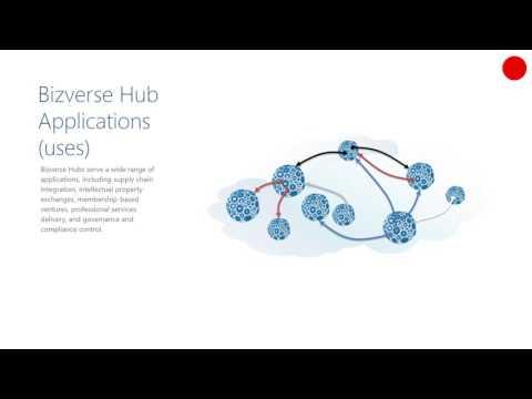 The Bizverse, an overview: Bizverse Hubs