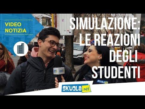 """Maturità 2019, tracce della prima simulazione nazionale """"approvate"""" dagli studenti. Così l'esame fa meno paura"""