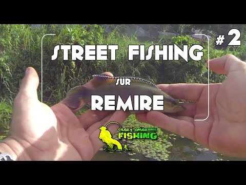 Street fishing Remire Montjoly, un patagai et un poisson madame