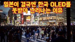 일본이 결국엔 한국 OLED를 못받아 난리나는 이유