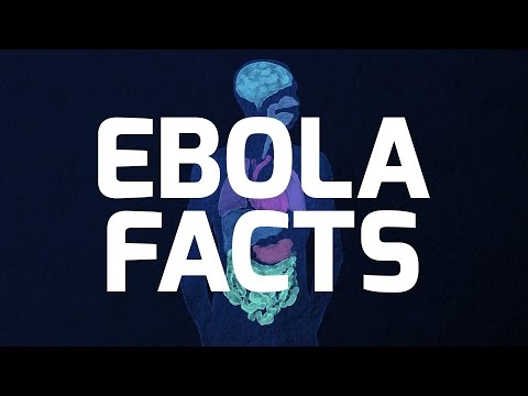 Ebola: Everything You Need To Know In 94 Seconds