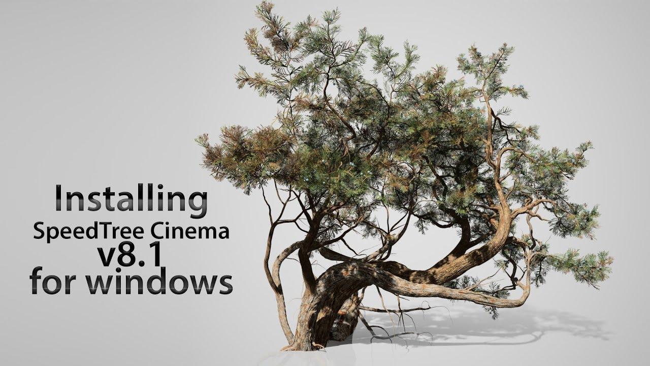 Installing Speedtree Cinema Modeler - YouTube