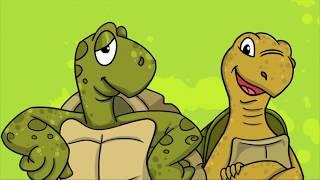Профессор Почемушкин - Развивающий мультфильм для детей –Сколько живут черепахи?