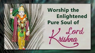 Worship the Enlightened Pure Soul of Lord Krishna