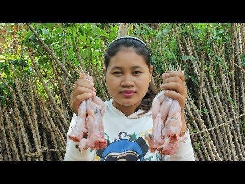Awesome Cooking Fried  Spicy Frog Recipe - Cook Frog Recipes - Village Food Factory