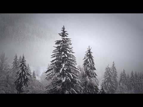 Алсу - Зимний сон (Sergey Litvinov Dance Mix)
