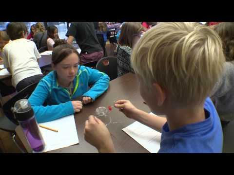 Julian Charter School Innovation Centre La Mesa Short #2