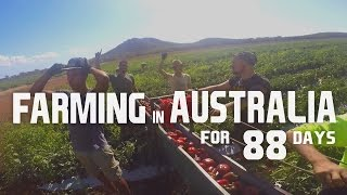 FARMING IN AUSTRALIA FOR 88 DAYS