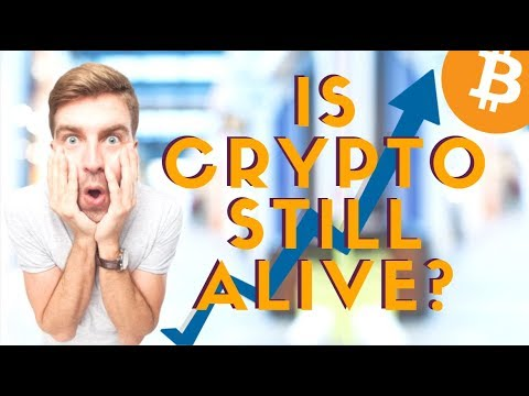 Global Altcoin News: Chinese Crypto Ratings, Norwegian & Swedish Coins, Bitcoin Pizza Day
