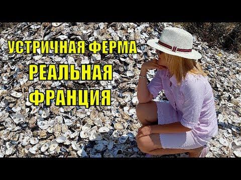 ФРАНЦИЯ Устричная Ферма