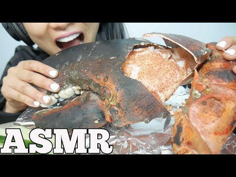 ASMR GIANT CLAW from a 15lb LOBSTER (EATING SOUNDS) NO TALKING | SAS-ASMR thumbnail