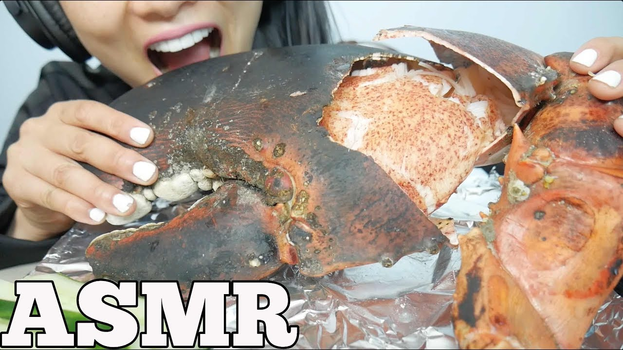 ASMR GIANT CLAW from a 15lb LOBSTER (EATING SOUNDS) NO ...
