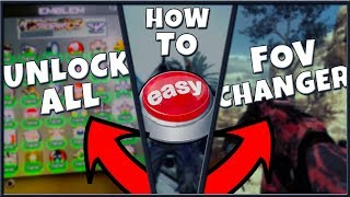 How To: Unlock All / Change FOV / Color Name (Modern Warfare 2 PC)