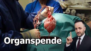Organspende - Widerspruchslösung vs Zustimmungslösung oder Scheindebatte im Bundestag? | Herr Anwalt