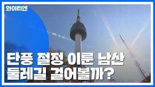 [날씨] 단풍 절정 이룬 남산...둘레길 걸어볼까?  / YTN