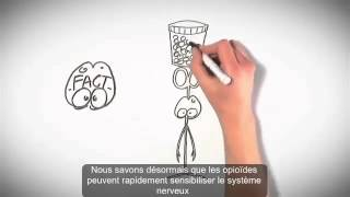 Understanding Pain brainman stops his opioids french subtitles