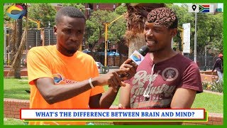 What's the Difference Between BRAIN and MIND? | Street Quiz South Africa | Street Quiz Mzansi