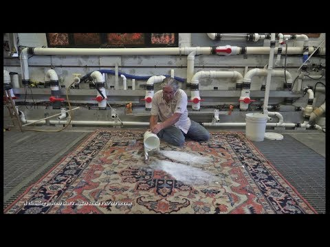 Cleaning Oriental wool carpet from urine smell-By PetPeePee company