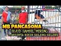 Aksi Murai Batu Pancasona Sampai Sujud Miring Ngepley Om Rey Shafan Mahadewa Sf Sultan Akbar  Mp3 - Mp4 Download