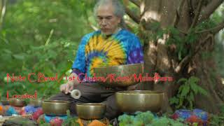 Quick 7 Min Chakra Tune up by the Redwood Tree ~ 1 min each Chakra ~ Crown to Root