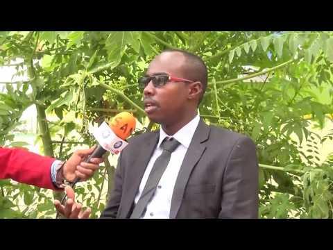 Burco:Xisbiga UCID Oo Dhowaan Dooranaya Murashax Ku Xigeenka UCID
