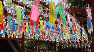 寺に響く音色と言葉 約3千個の風鈴 福岡・山王寺