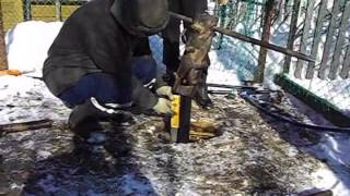 видео Фундамент для сарая своими руками: простой вариант
