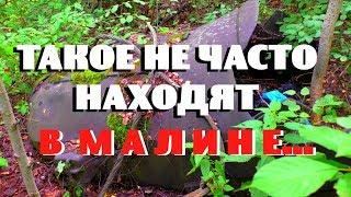 ЧЕРТОВ ЛЕС! ПОШЕЛ ЗА ГРИБАМИ А НАШЕЛ ЕГО - ПРОСТО ОФИГЕТЬ НАХОДКА