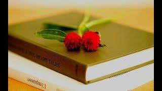 Стихи о Любви. Читает  Александр Лесь.