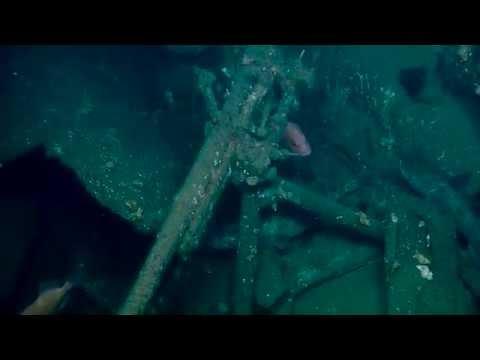 SS Coast Trader: Deck Mounted Gun | Nautilus Live