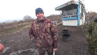 Съездил в рыбхоз за карпом карп крупный вышел