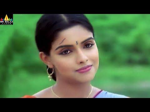 Asin Scenes Back to Back | Gharshana Telugu Movie Scenes | Sri Balaji Video