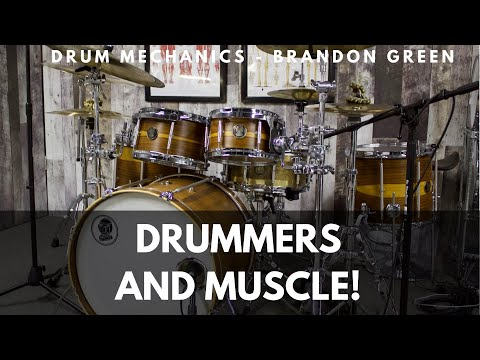 DRUMMERS AND MUSCLE - 4 Myths of Muscle