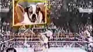 British Bulldogs vs Steve Lombardi and Jobber