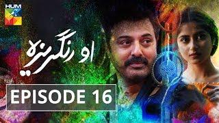 O Rungreza Episode #16 HUM TV Drama