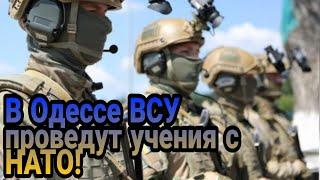 В Одессе Украина проведет совместные учения с НАТО!