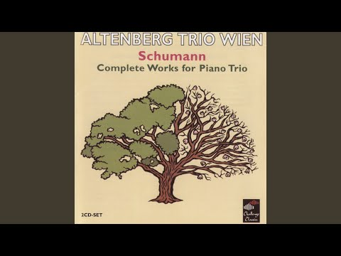 Trio No. 1 In D Minor, Op. 63: I. Mit Energie Und Leidenschaft