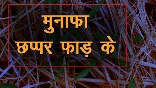 'ऋषि कृषि' यानि कुदरती खेती क्या है | Rishi Krishi - Technique | ऋषि कृषि लाती है खुशी
