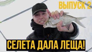 Судак прям под ногами Селетинское водохранилище Казахстан Городские на рыбалке