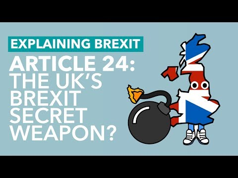 Is WTO Article 24 The UK's Secret Weapon? - Brexit Explained