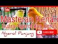 Masteran Kenari Gacor Ngerol Panjang Dan Suaranya Keras  Mp3 - Mp4 Download
