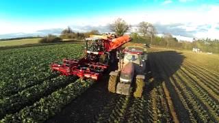 Agrifac 12 row sugar beet harvester HexxTraxx